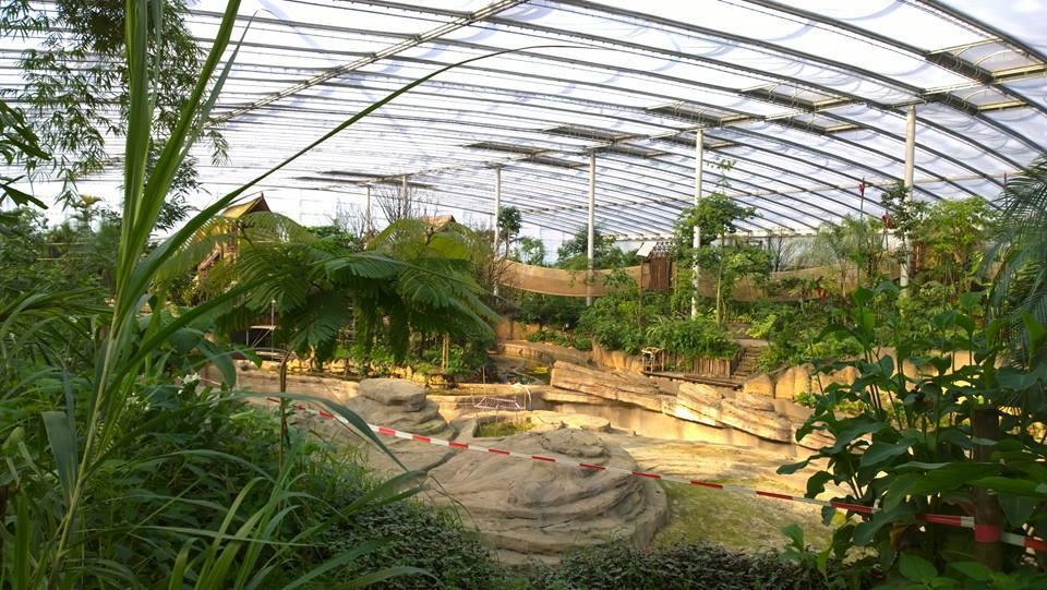 Wildlands Adventure Zoo In Emmen Nl Tropical Adventure
